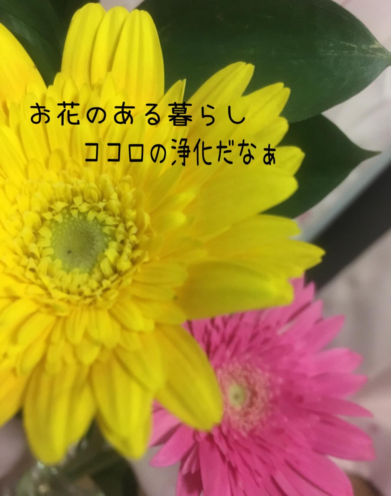 記事に書いた一輪挿しの黄色のガーベラ写真